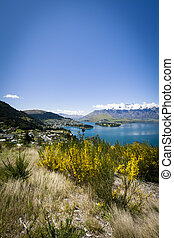 Sunny view of Queenstown on New Zealands South Island