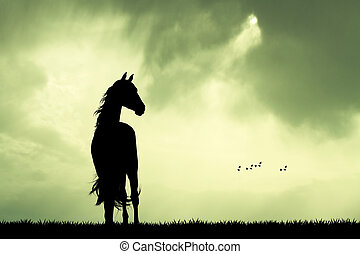 horse silhouette at sunset - illustration of horse...