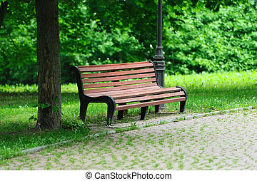 Bench in the park - Bench in the sunmmer park among the...