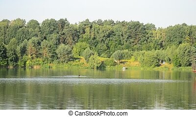 Person swims in a lake or river in summer - Unidentifiable...