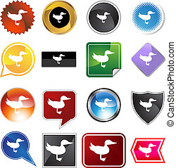 Duck Variety Icon Set - Duck icon set isolated on a white...
