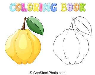 Coloring quince on white
