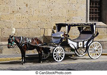 cavalo, desenhado, carruagem, Guadalajara, Jalisco,...