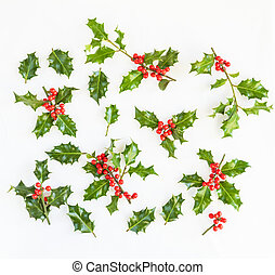 Fresh holly with red berries
