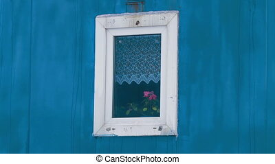 Flower in window Coach house of drilling crew - Flower in...