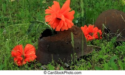 red poppy on the helmet of a dead soldier
