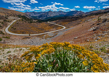 Cottonwood Pass Colorado - WiView of the road from the top...