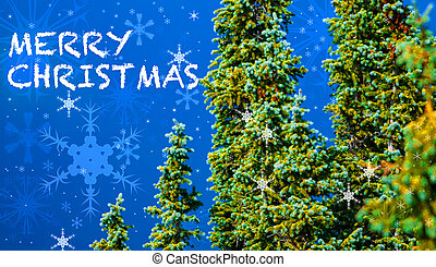 Christmas Card - Pine trees snow flakes and white merry