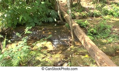 Small creek in Topes de Collantes - Small Creek in Topes de...