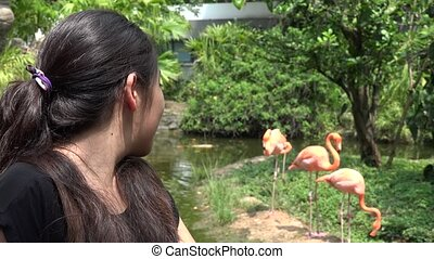 Teen Girl with Flamingos on Summer - Teen Girl with...
