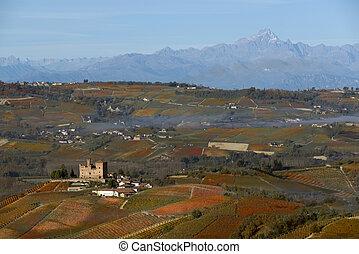 vista, de, otoño, el, Langhe, UNESCO, herencia,