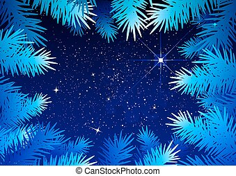 Starry sky in the winter forest