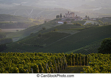 Summer view in the Langhe Unesco heritage - Summer view of...