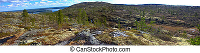 Norwegian plateau (fjelds) in Lapland. Most Northern forest...