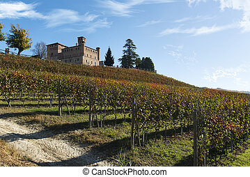 View of autumn the Langhe Unesco heritage - Autumnal view of...
