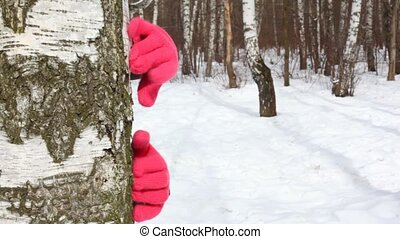 Hands in red glove knocks on stem tree