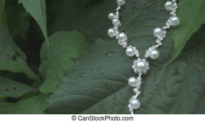 pearl necklace in the grass macro