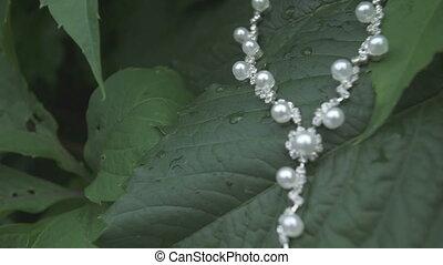 perla, collar, en, el, pasto o césped,