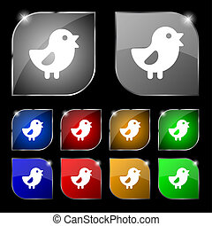 chicken, Bird icon sign. Set of ten colorful buttons with...