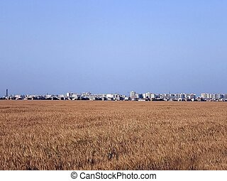 Wheatfield - Large industrial city in the distance of a...