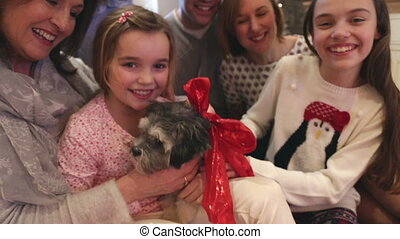 Dogs christmas treat - Family petting their dog at christmas...
