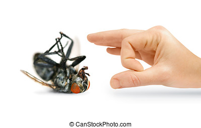 Give Pests The Flick With An Isolated Hand Flicking A Huge...