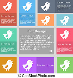 chicken, Bird icon sign. Set of multicolored buttons with...