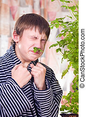 Treatment by leaves of a geranium - The teenager is treated...