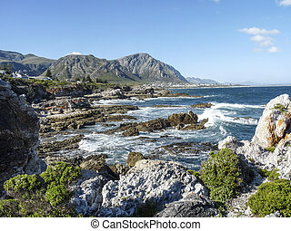 coastline at Fernkloof nature reserve in South Africe
