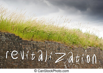 Revitalization written on old red bricks wall, green grass...