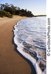 Beach Waves Roll In On A Swansea Morning Tide, Taken...