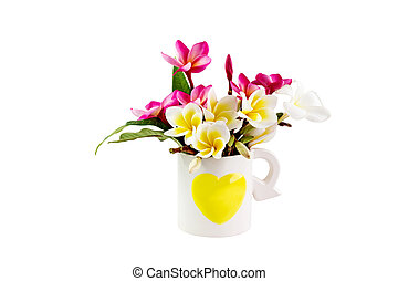 (With clipping path) Isolated beautiful sweet pink and white flower plumeria