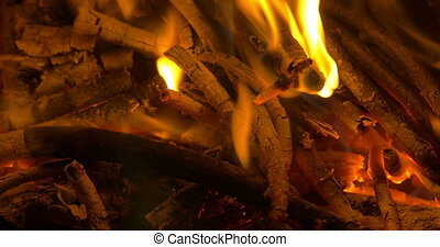 Wooden Sticks in Campfire - Closeup shot of wooden sticks...