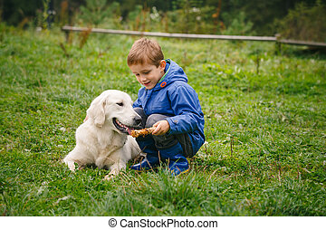 Boy with his pet in the forest - Little boy playing in...