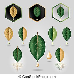 Leaf with precious sap logo, icon set