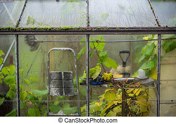 Small greenhouse in the autumn