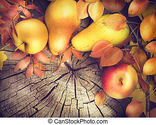 Thanksgiving frame background. Colorful leaves, apples and...