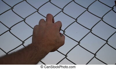 Hand Grabbing Wire Fence Closeup - Close up evening or dusk...
