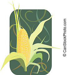 Maize - Illustration of maize with petals open in floral...