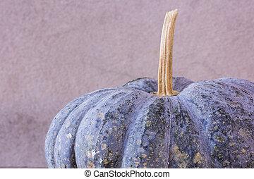 Art Photo pumpkin still life