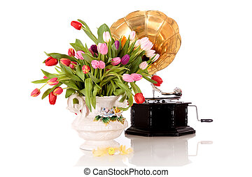 Easter tulips vase gramophone - Bouquet Easter tulips in...