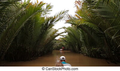 Tropical forest boat trip on Mekong Delta Vietnam - Tropical...
