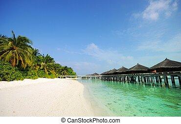 beach scene - Picture of beach scene at maldives