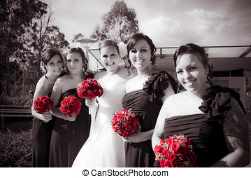 Lineup Of Bride And Bridesmaides In A Formal Wedding Photo