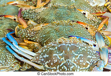 Blue Crabs background