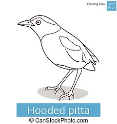 Hooded pitta bird learn birds coloring book vector - Hooded...