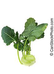 single cabbage turnip isolated on white background