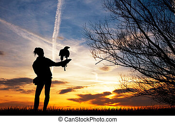 Falconer at sunset - illustration of falconer at sunset