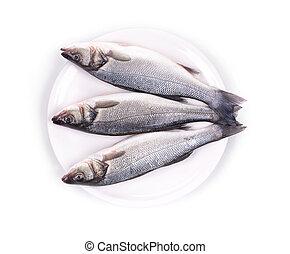 fresh seabass fish on plate - Three fresh seabass fish on...
