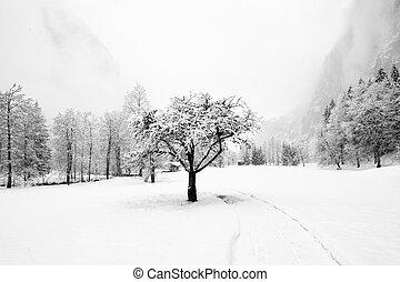 Truemmelbach Falls (Lauterbrunnen, Switzerland) - Winter...